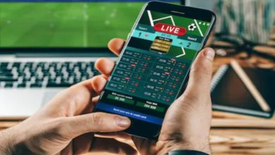 Photo of Why Should You Consider Online Sports Betting