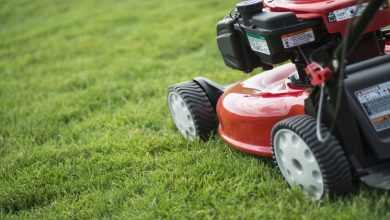 Photo of A Buyer's Guide to Choosing the Right Mower and Doing Proper Maintenance