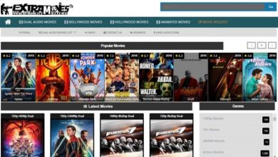 Photo of Worldfree4u website | Worldfree4u Bollywood movies download HD | Worldfree4u movies. In – Which categories of films are accessible on the worldfree4u website?
