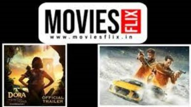 Photo of Moviesflix movie download | Moviesflix. net | Moviesflix pro.in – Why will you choose the moviesflix website to download new movies?