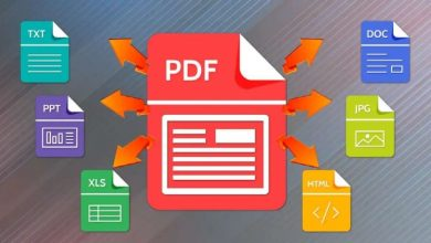 Photo of The Convenience of Converting PDF to PNG with GogoPDF